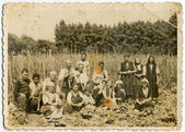 Group of farmers — Foto Stock