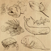 Underwater, Sea Life (vector set no.4) - hand drawn — Stock Vector