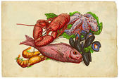 From the series food: Seafood — Stock Photo
