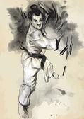 Karate - Hand drawn (calligraphic) vector — Cтоковый вектор