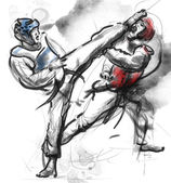 Tae-Kwon Do. An full sized hand drawn illustration on white — Stock Photo