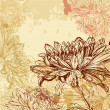 Chrysanthemum background - Stok Vektör