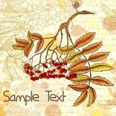 Outono fundo sujo com ramo de rowan desenhados à mão — Vetor de Stock