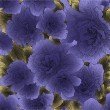 Seamless violet flowers - Stock vektor