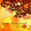 Autumn red background with blurry lights and silhouette of maple leaves — Imagen vectorial