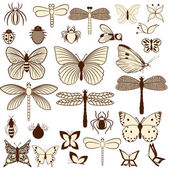 Set of stylized insects for decorating your work. Easy to edit and to change colors. — Stock Vector
