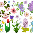 Collection of spring flowers. Raster version — Stock Vector