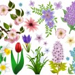 Stock Vector: Collection of spring flowers. Raster version