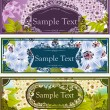 Floral spring banners with hyacinths — Stock Vector