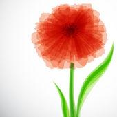 Flor roja transparente — Vector de stock