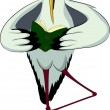 Stork in glasses and mortarboard reading book - Vektorgrafik
