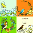 Set of vector floral backgrounds with birds — Cтоковый вектор