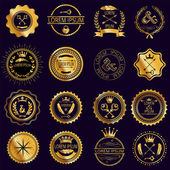 Collection of vintage round golden badges — Stok Vektör