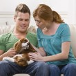 Stock Photo: Young Couple Holding Dog