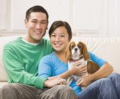 Cazip asya çift holding köpek — Stok fotoğraf