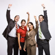 Stock Photo: Business cheering