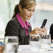 Businesswoman Texting with Cell Phone — Stock Photo #18800455