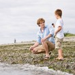 Foto Stock: Father and son gathering rocks at beach