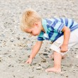 Stock Photo: Boy gathering rocks at beach