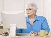 Older Woman on Computer — Stock Photo