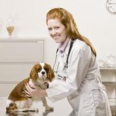 Mladý ženský lékař — Stock fotografie