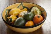 Bowl of Ornamental Gourds — Stock Photo