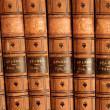 Leather Bound Books — Stock Photo