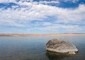 Rock, Abert Lake — Stock Photo
