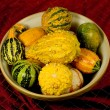 Bowl of Ornamental Squash — Stock Photo #17839863