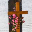 Stock Photo: Memorial Cross, KnappDock