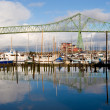 Astoria-Megler Bridge and West Mooring Basin — Stock Photo #18393959