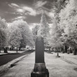 Infrared Photo of a Cemetery — Stock Photo #18656927
