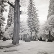 Royalty-Free Stock Photo: Infrared Photo of a Cemetery