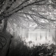 Royalty-Free Stock Photo: Infrared Photo ofthe Duck Pond at Laurelhurst Park in Portland,