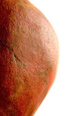 The Problem with Pears — Stock Photo