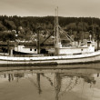 Old Fishing Boat — Stock Photo #19491085