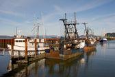 Fishing Boats, East Mooring Basin — Stock Photo