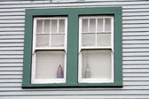 Stock Photo of an Unattractive Green Window — Stock Photo