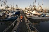 Marina in Westport, Washington — Stock Photo