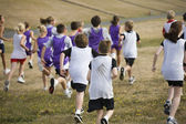 Two Teams of Cross Country Runners — Stock Photo