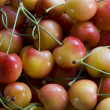 Foto de Stock  : Life Is Bowl of Cherries