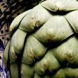 Stock Photo: One Artsy Artichoke