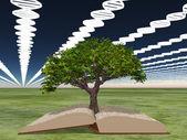 Boken om livet med livets träd — Stockfoto