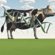 Cow and questions clouds GMO — Stock Photo #18911879