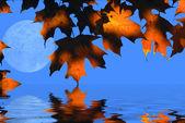 Luna y hojas de otoño — Foto de Stock