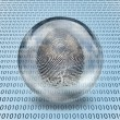 Fingerprint and binary code - Stock Photo