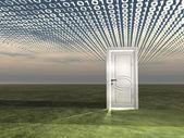 Puerta en paisaje con secuencias binarias — Foto de Stock
