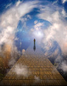 Path to light — Stock Photo