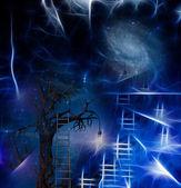 Tree climb — Stock Photo