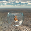 Stock Photo: Gold fish in glass bowl in barren desert
